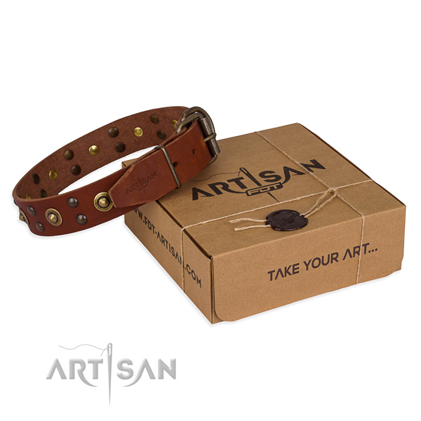 Corrosion proof hardware on full grain leather collar for your stylish pet