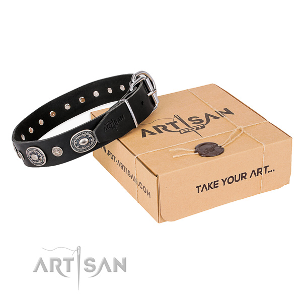 Top rate full grain leather dog collar crafted for comfy wearing
