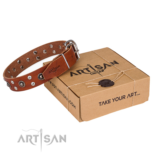 Corrosion proof fittings on full grain genuine leather collar for your impressive doggie