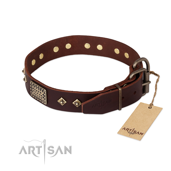 Leather dog collar with strong hardware and decorations