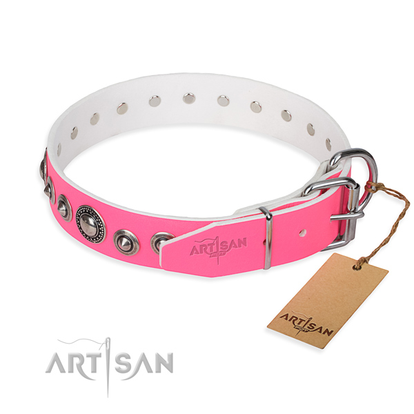 Full grain natural leather dog collar made of flexible material with rust-proof embellishments