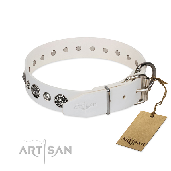 Top notch Full grain natural leather dog collar with corrosion resistant fittings