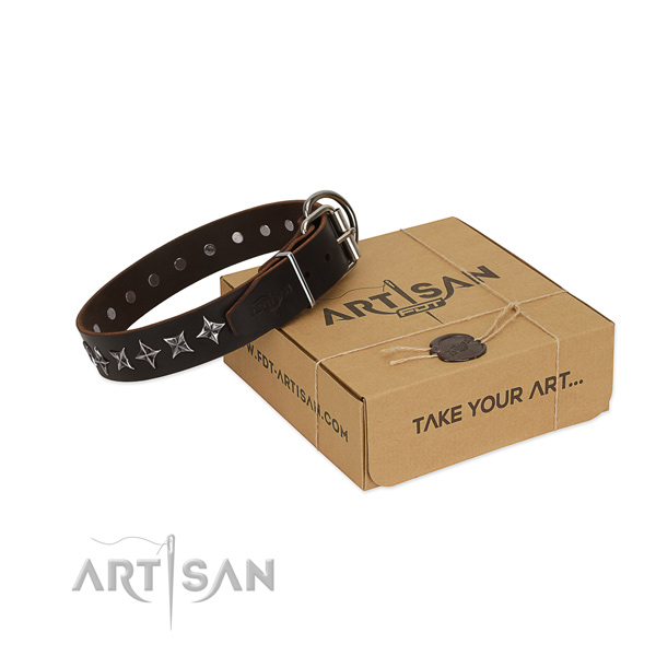Walking dog collar of best quality natural leather with adornments