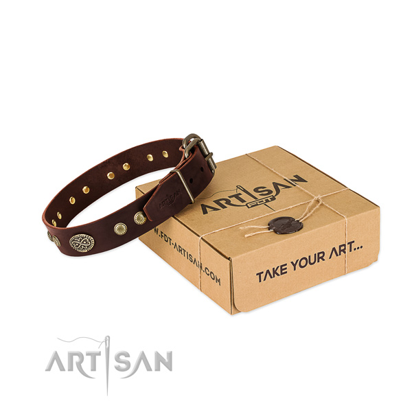 Durable embellishments on full grain leather dog collar for your four-legged friend