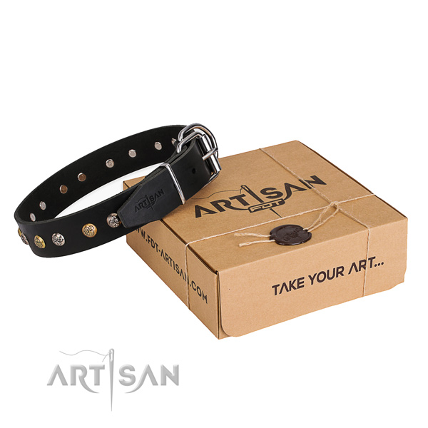 Reliable full grain genuine leather dog collar created for basic training
