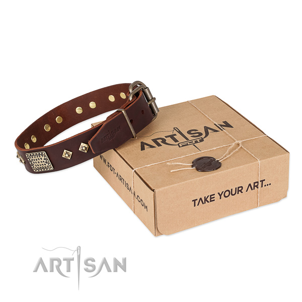 Amazing leather collar for your handsome pet