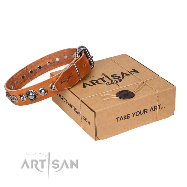 Leather dog collar made of high quality material with rust-proof hardware