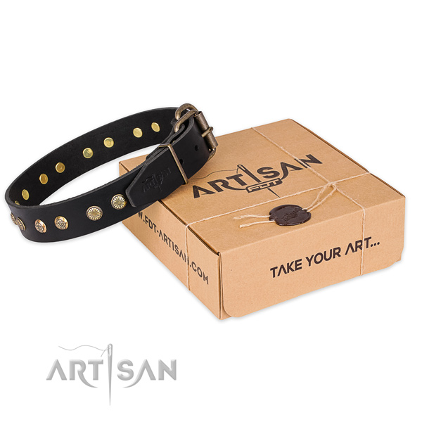 Corrosion proof buckle on full grain genuine leather collar for your beautiful canine