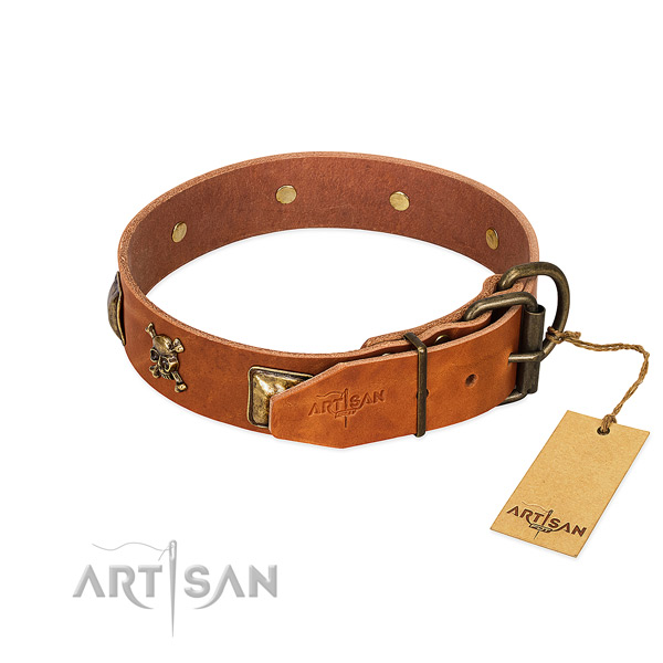 Exquisite leather dog collar with strong studs