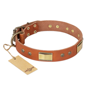 """Enchanting Spectacle"" FDT Artisan Tan Leather Newfoundland Collar with Old Bronze Look Plates and Round Studs"