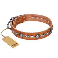 """Daily Chic"" FDT Artisan Tan Leather Newfoundland Collar with Decorations"
