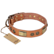 """Lost Desert"" FDT Artisan Leather Newfoundland Collar with Brass Decorations"