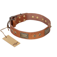 """Catchy Look"" FDT Artisan Decorated Tan Leather Newfoundland Collar"
