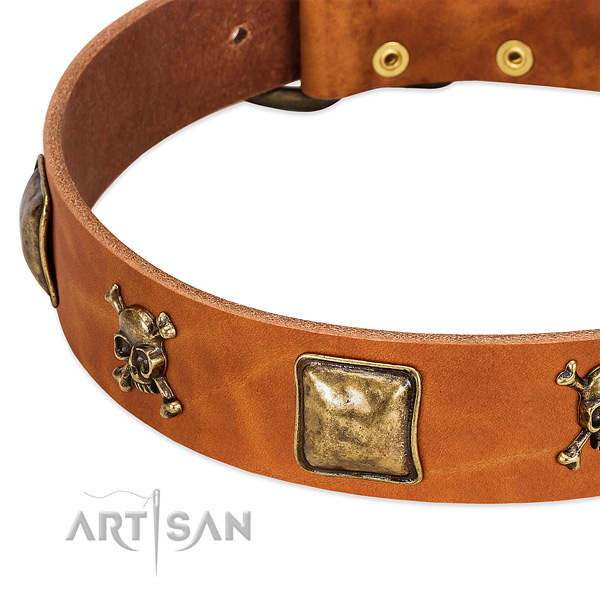 Trendy natural leather dog collar with strong studs