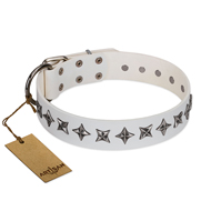 """Midnight Stars"" FDT Artisan Fashionable Leather Newfoundland Collar with Old Silver-like Plated Decorations"