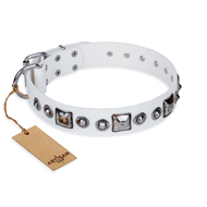 """Lustre of Fame"" FDT Artisan White Studded Leather Newfoundland Collar"