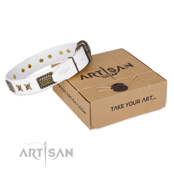 Reliable hardware on genuine leather collar for your stylish pet