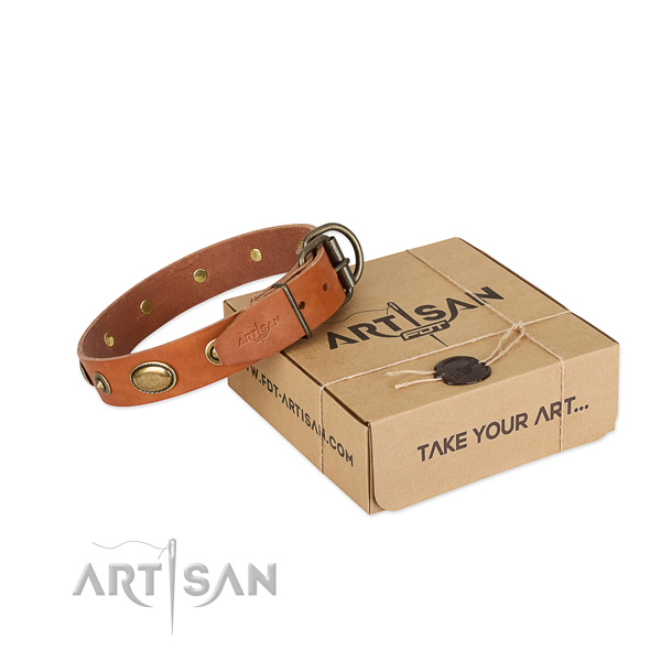 Trendy genuine leather collar for your impressive four-legged friend