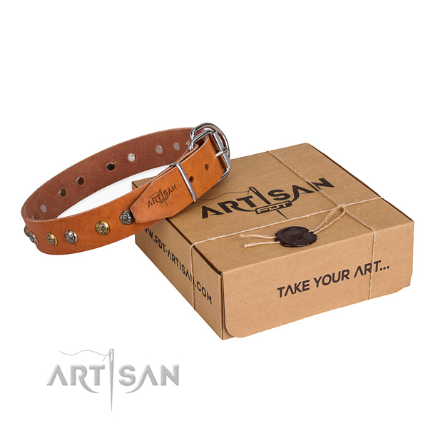 Gentle to touch genuine leather dog collar created for walking