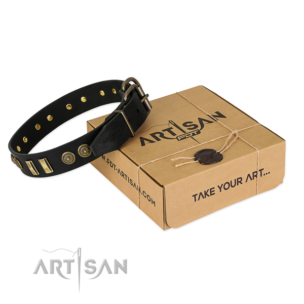 Rust resistant adornments on natural leather dog collar for your dog