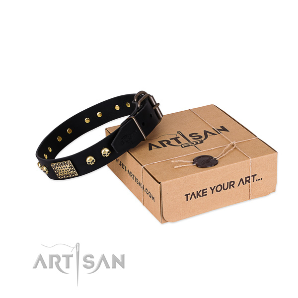 Reliable traditional buckle on dog collar for comfortable wearing