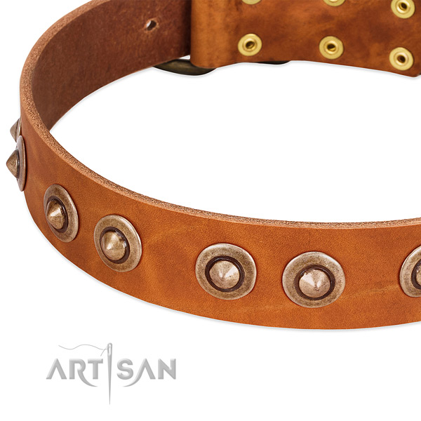 Durable fittings on genuine leather dog collar for your pet