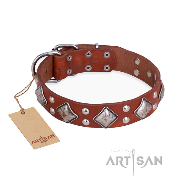 Everyday walking fashionable dog collar with corrosion proof buckle