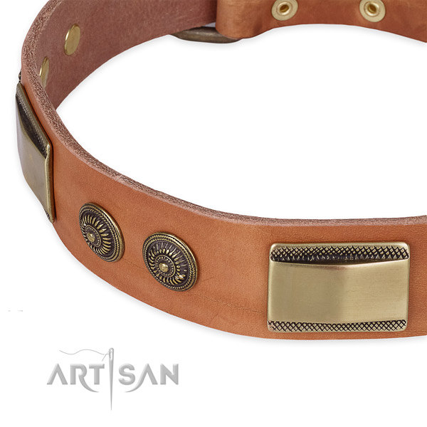 Studded full grain natural leather collar for your stylish pet