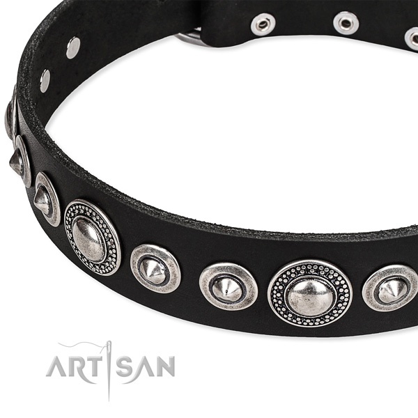Daily use adorned dog collar of durable full grain leather