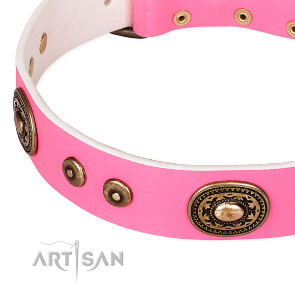 Embellished dog collar made of quality leather