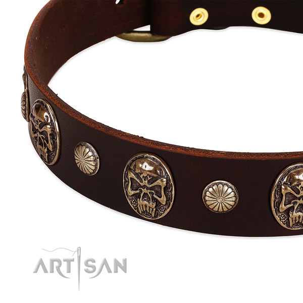 Full grain natural leather dog collar with decorations for stylish walking