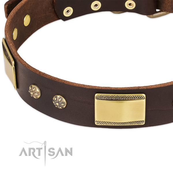 Reliable hardware on genuine leather dog collar for your four-legged friend