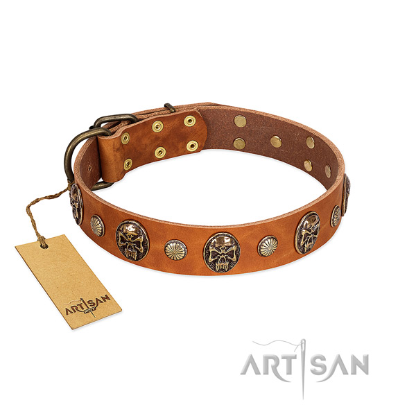 Adjustable full grain genuine leather dog collar for everyday walking