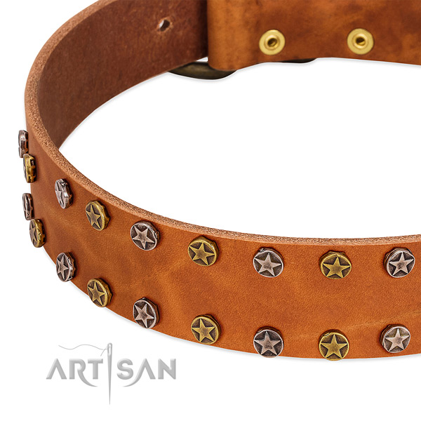 Easy wearing full grain leather dog collar with top notch adornments