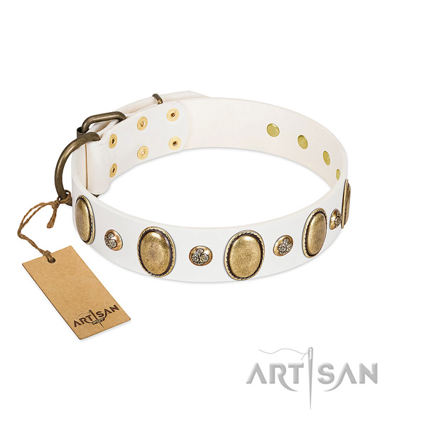 Full grain genuine leather dog collar of gentle to touch material with fashionable decorations