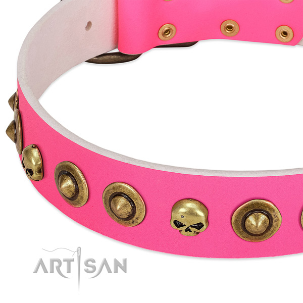 Top notch adornments on leather collar for your four-legged friend