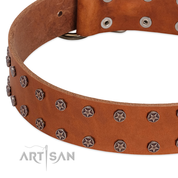 Unique full grain leather dog collar for easy wearing