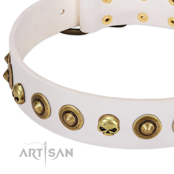 Trendy embellishments on full grain leather collar for your pet