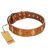 """Glossy Autumn"" Designer Handmade FDT Artisan Tan Leather Newfoundland Collar with Ovals and Studs"