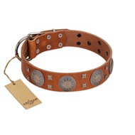 """Sun Rise Noon"" FDT Artisan Tan Leather Newfoundland Collar with Unique Design"