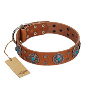 """Blue Sands"" FDT Artisan Tan Leather Newfoundland Collar with Silver-like Studs and Round Conchos with Stones"
