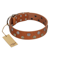 """Ancient Symbol"" Trendy FDT Artisan Tan Leather Newfoundland Collar with Silver- and Gold-Like Studs"