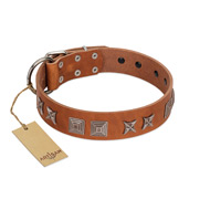 """Antique Figures"" FDT Artisan Tan Leather Newfoundland Collar with Silver-like Engraved Plates"