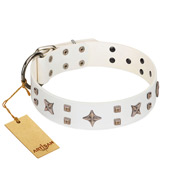 """Starry Heaven"" Designer Handcrafted FDT Artisan White Leather Newfoundland Collar with Stars and Studs"