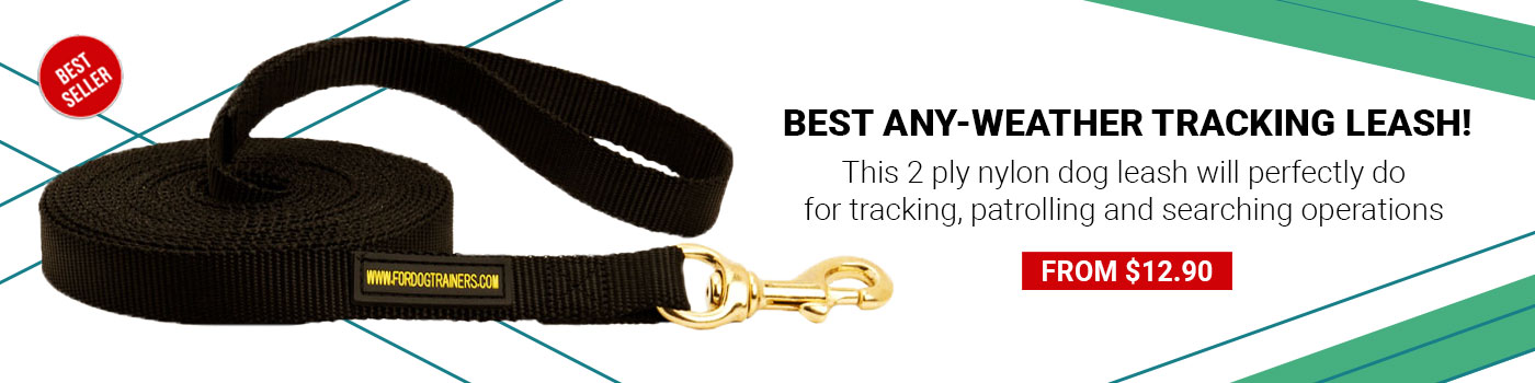 Newfoundland Nylon Leash Tracking and Training